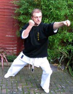 basics using karate punch technique