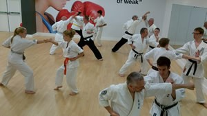 Karate pairs work training session