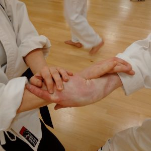 Adults karate pairs work